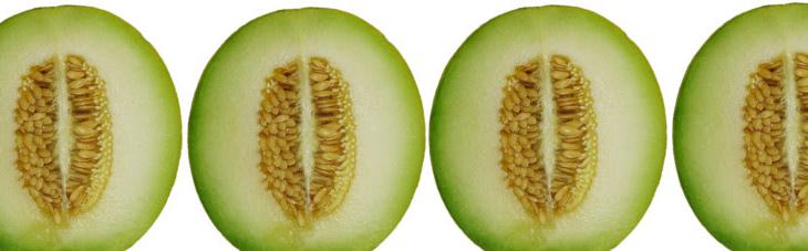 Abriendo melones entre las entidades de la Economía Social y Solidaria y la financiación ética